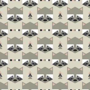 Geometric raccoon