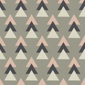 Geometric raccoon triangle