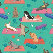 Yoga-cats3-large-01_shop_thumb
