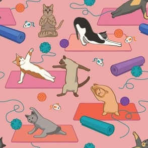 Cats Doing Yoga - Pink Small Version