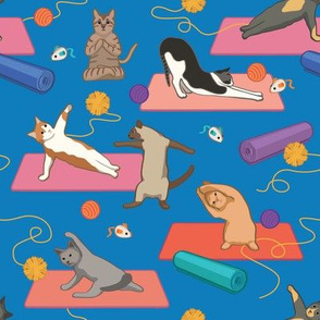 Funny Cats Doing Yoga - Blue