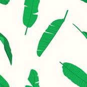 Bright Green Banana Leaves on White