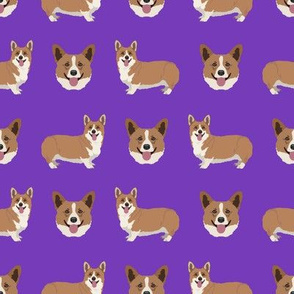 Smiling Corgi Dogs on Deep Purple