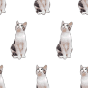 Small Scale White and Gray Cat Seamless Pattern