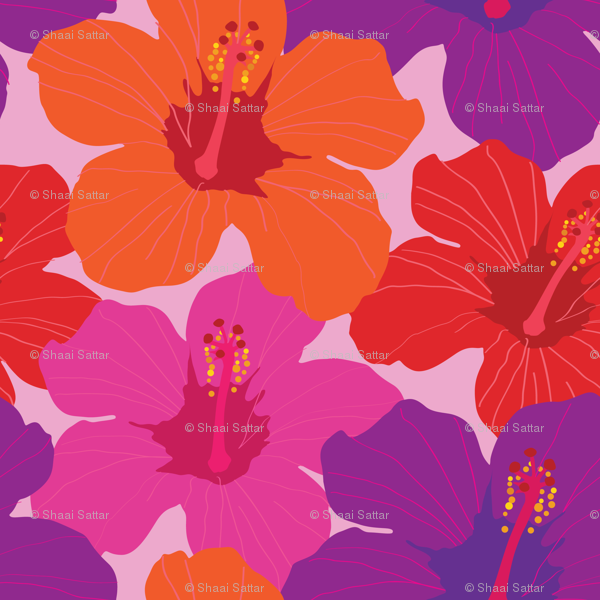 Colorful Hibiscus Flowers Smaller Version Wallpaper