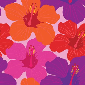 Colorful Hibiscus Flowers - Smaller Version