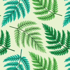 Multi-Colored Green Fern Leaves