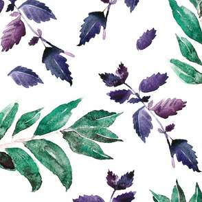 Basil spices watercolor seamless pattern