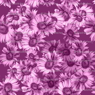 Raspberry Wild Floral