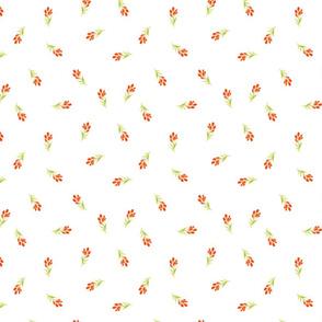 Orange Buds