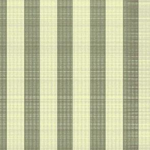 stripe-eco-olive green