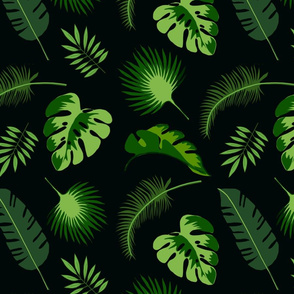 Pandanus palms black