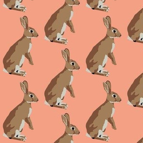 Richard the rabbit in coral (small)