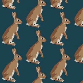Richard the rabbit in navy (small)