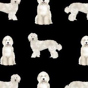 labradoodle fabric - dog fabric, dog breeds fabric, doodle dog fabric - black
