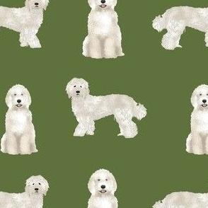 labradoodle fabric - dog fabric, dog breeds fabric, doodle dog fabric -green
