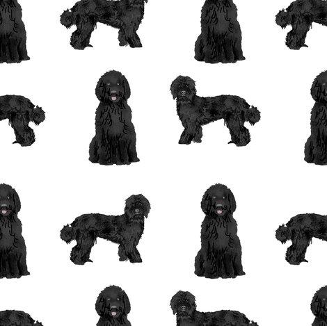 black labradoodle fabric - dog fabric, dog breeds fabric