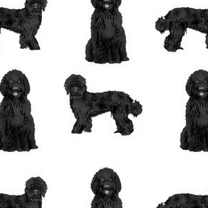 black labradoodle fabric - dog fabric, dog breeds fabric, doodle dog fabric - white