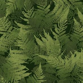 ForestFloor by Paducaru
