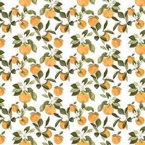 Mini Orange Blossom