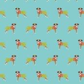Rboxer-hula-dog-2_shop_thumb