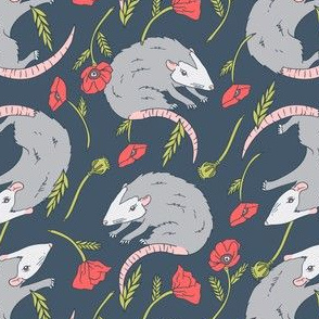 Possums and Poppies