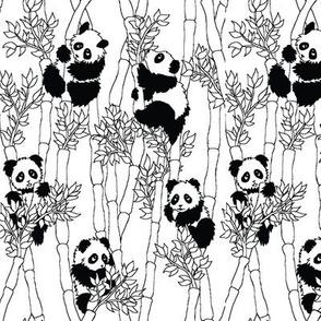 bamboo panda, no color