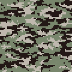 Pixelated Multi-phase Camo