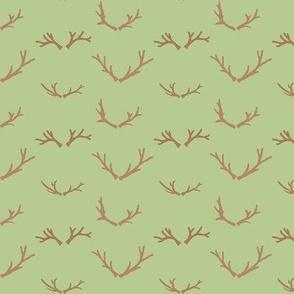 Branching Antlers | Vintage Vacation
