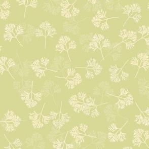 Poppy Leaves on Spring Green