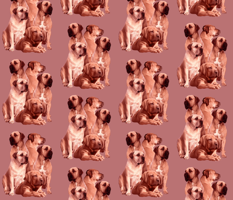 mastiff family fabric fabric by dogdaze_ on Spoonflower - custom fabric