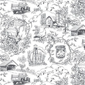 Country Living Toile Gray