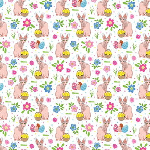 Easter Cats & Flowers