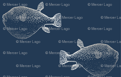 Rsilver-blowfish-on-navy-01_preview