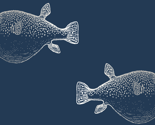 Rsilver-blowfish-on-navy-01_thumb