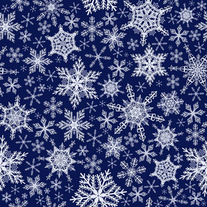 Magic night snowflakes