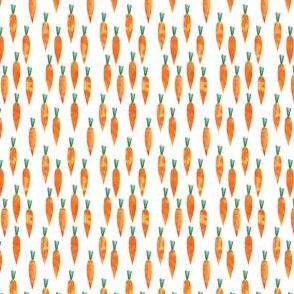 (micro scale) carrots  - easter spring C19BS
