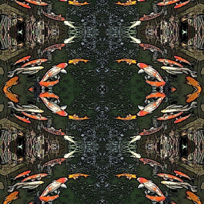 Fish Circles