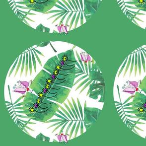Palms & Butterflies Through the Lattice Large Scale