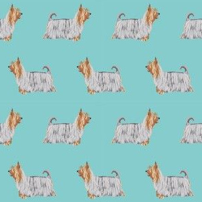 silky terrier dog fabric - terrier dog fabric, dog breed fabric, dogs fabric, silky terrier pattern - blue
