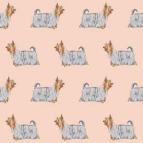 silky terrier dog fabric - terrier dog fabric, dog breed fabric, dogs fabric, silky terrier pattern - blush