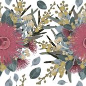 Vintage Australian Wildflowers No.3