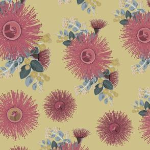 Vintage Australian Wildflowers No. 4
