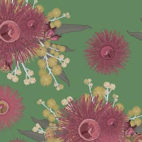 Vintage Australian Wildflowers No. 5