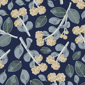 Vintage Australian Wildflowers No. 7