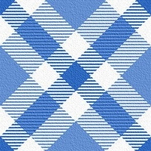 Blue and White Plaid on the Diagonal