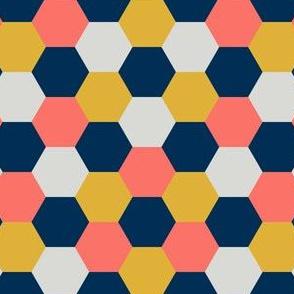 08424123 : R6V 54 : coral + goldenrod