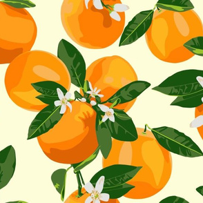Oranges and blossoms on cream II
