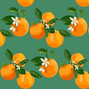 Orange blossoms  on teal