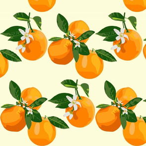 Orange blossoms on cream